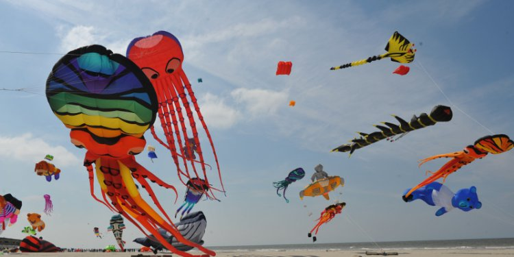 Rencontres internationales de cerfs-volants de berck-sur-mer 2018